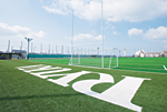 Artificial Turf Ground
